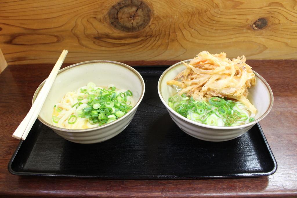 【車中泊日本一周11日目】ひたすらうどんを食べる!以上!~あ、そういえば四国出ました~【香川~徳島~兵庫】
