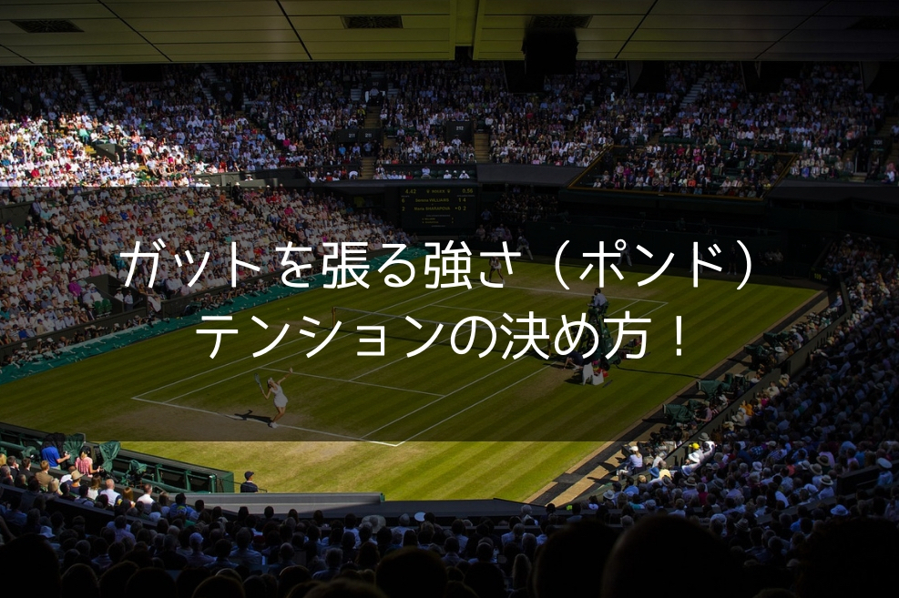 テニス ガット テンション