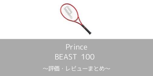 【Prince】BEAST 100 2019の評価・レビュー・インプレまとめ【万能黄金スペック】