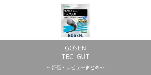 【GOSEN】TEC GUT(テックガット)の評価・レビューまとめ【インプレ】