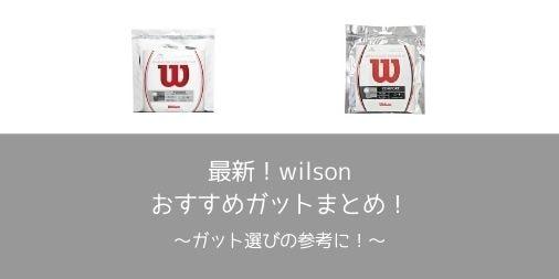 【評価・レビュー】最新!wilson(ウィルソン)のおすすめガットまとめ!【素材別】